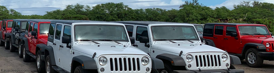 Fleet of Jeep Wranglers